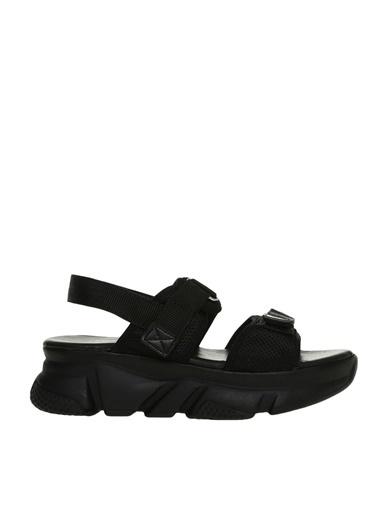 Limon Company Limon   Siyah Sandalet Siyah